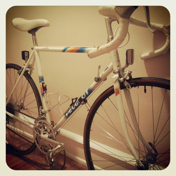 My lovely new bike, pre-overhaul