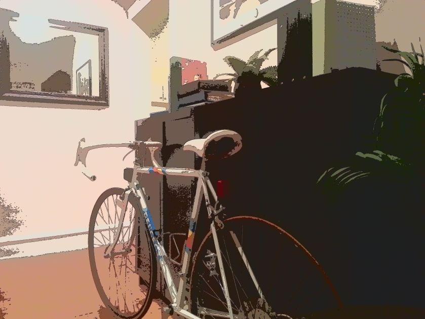 sometimes I let my bikes stay inside